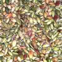 Roasted and Salted Pepita Seeds