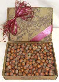 Raw Hazelnuts (Filberts) In The Shell