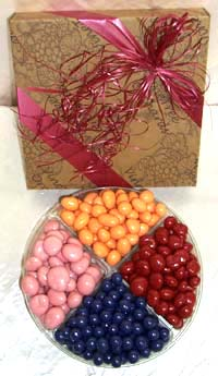 Large 4 Pack - Pastel Chocolate Covered Dried Fruit
